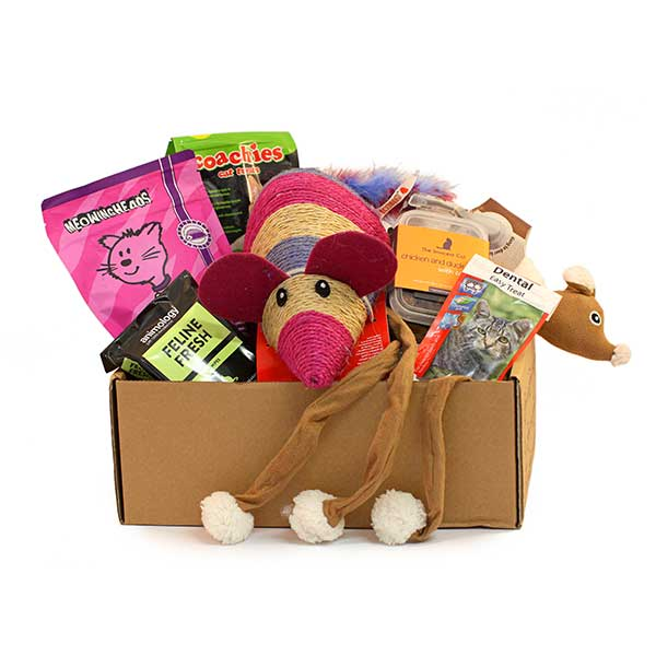 Gifts for Christmas cats and kittens love toys and treats personalised with great ideas.