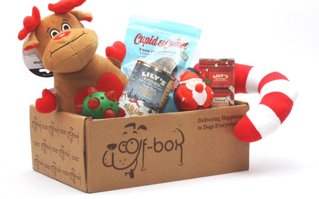 Christmas Puppy Gift Archives Woof Box